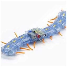 Click here to learn more about the Tamiya America, Inc Centipede Robot.