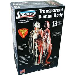 Click here to learn more about the Lindberg Transparent Human Body.