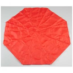 "Click here to learn more about the Estes Nylon Parachute Pro Series II 24""."