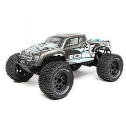 Click here to learn more about the ECX 1/10 2WD Ruckus Brushless Monster Truck: RTR.